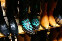 Blueboots